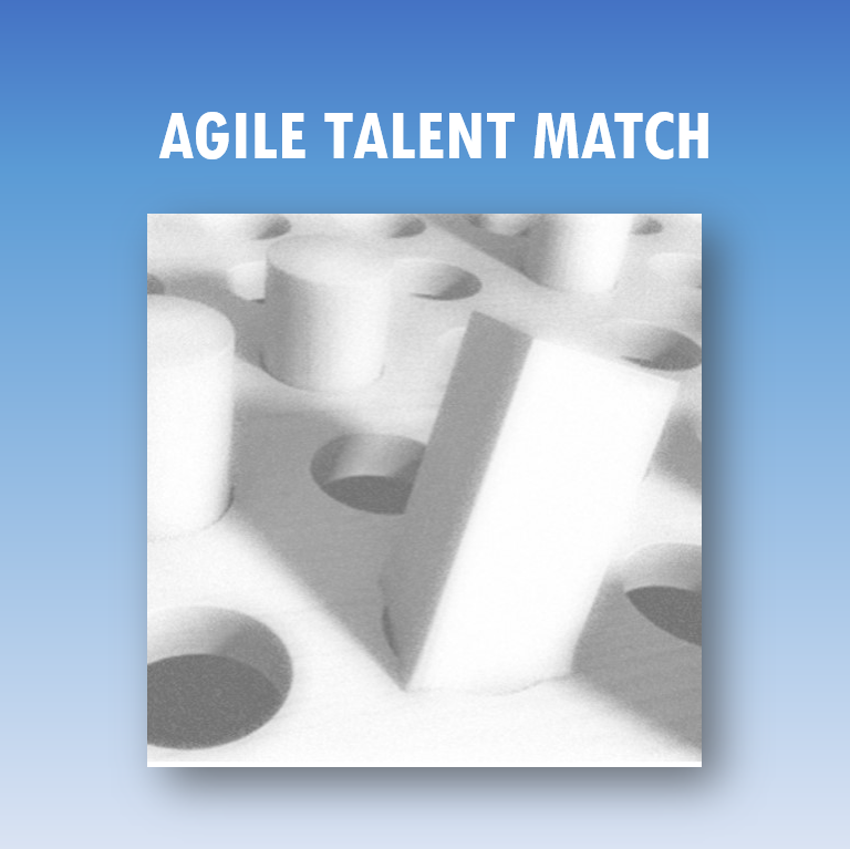 Agile Talent Match: past het blok in het gat?