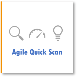 Agile Quick Scan